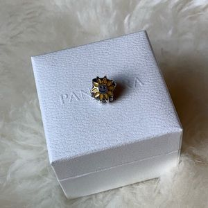 Pandora retired sunshine charm